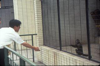 Zoo - man and monkey