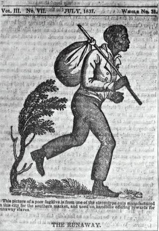 Runaway_slave PD